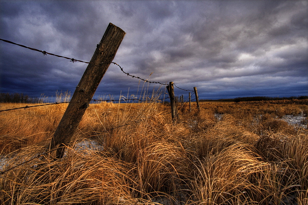 Barbed Wire Fence Posts with Dark Sky in Background, Alberta