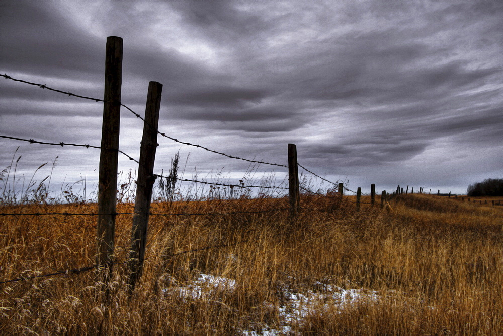 Barbed Wire Fence Posts with Dark Sky Behind, Alberta