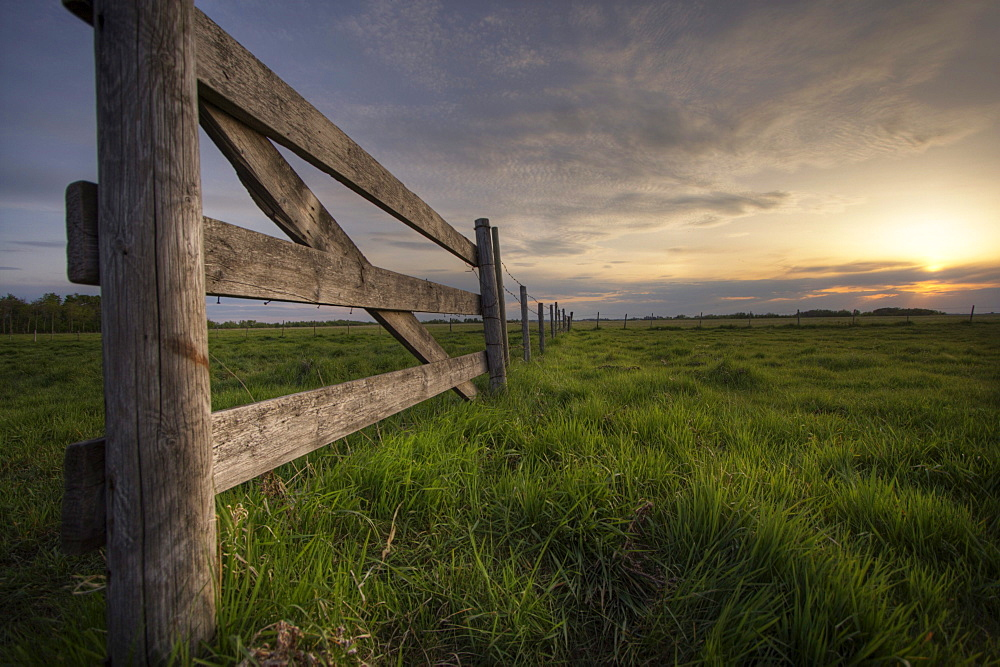 Fenceline along a Cow Pasture on the Prairies at Sunset, near Edmonton, Alberta