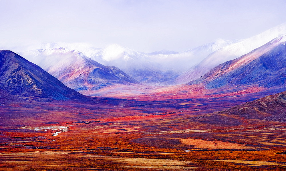 Tombstone Range and fall colours in Ogilvie Mountains along Dempster Highway, Tombstone Territorial Park, Yukon