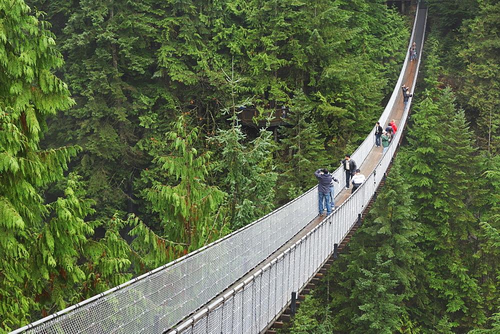 The Capilano Suspension Bridge, Vancouver, British Columbia