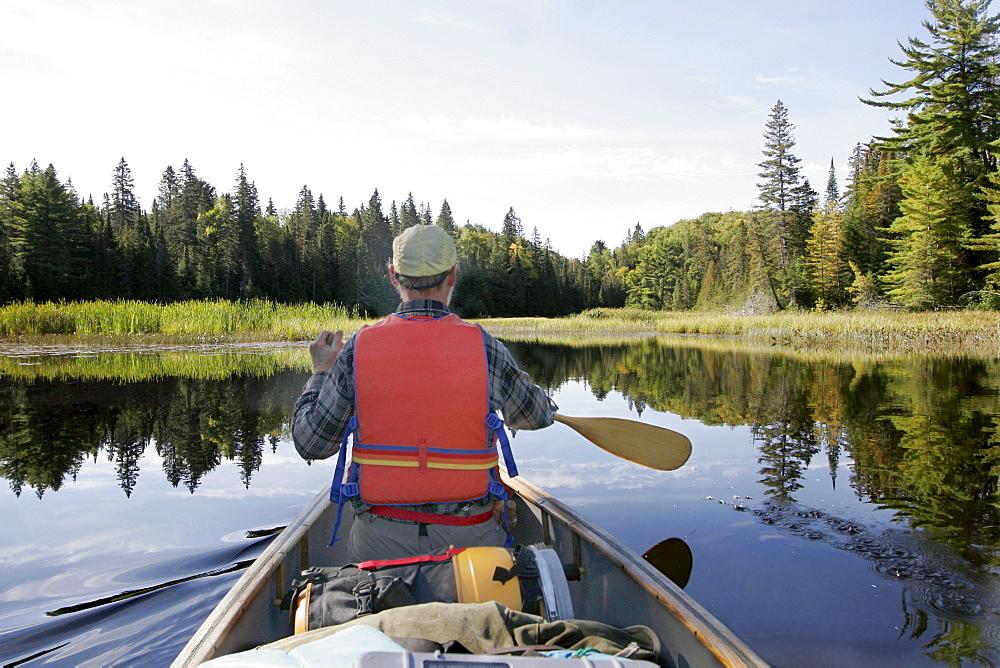 Man Paddling in a Canoe, Otterslide Creek, Algonquin Park, Ontario