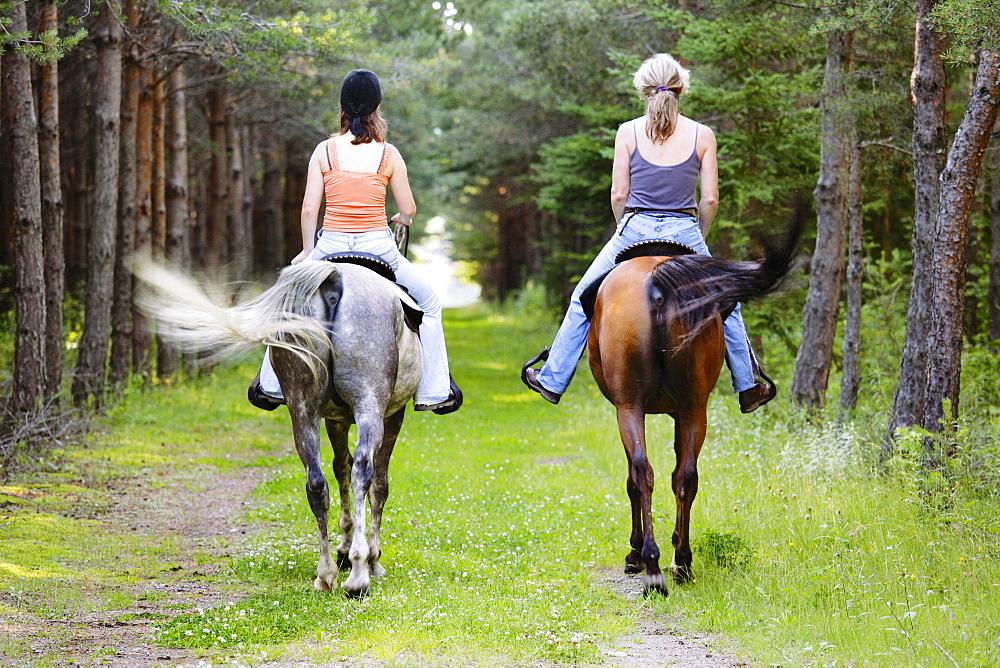 Women Riding Horses in Forest, Saint-Andre-de-Kamouraska, Quebec