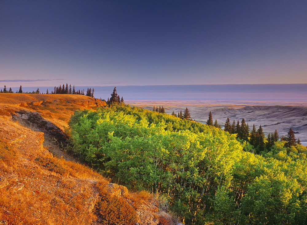Conglomerate Cliffs, Cypress Hills Interprovincial Park, Saskatchewan, Canada