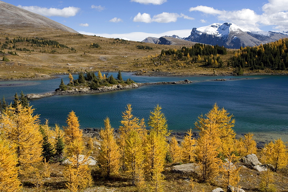 Rock Isle Lake in autumn, Sunshine Meadows, Banff National Park, Alberta, Canada