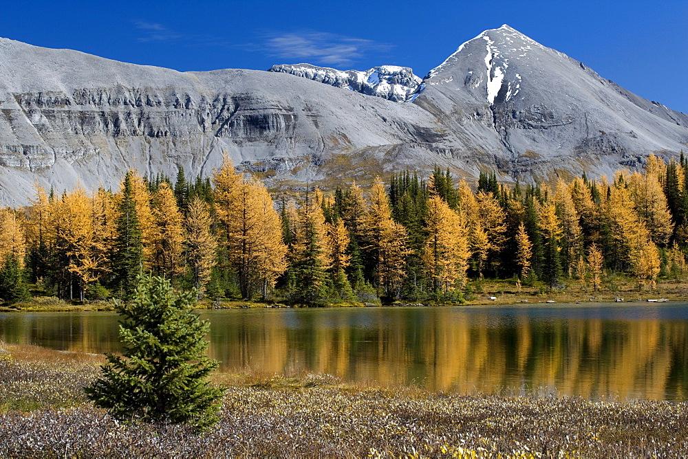 Howard Douglas Lake in autumn, Alberta, Canada