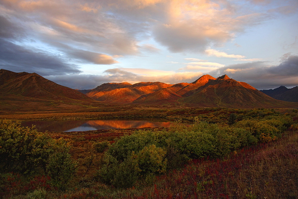 Morning sunlight lighting up Mount Adney and fall colours along the Dempster Highway, Yukon