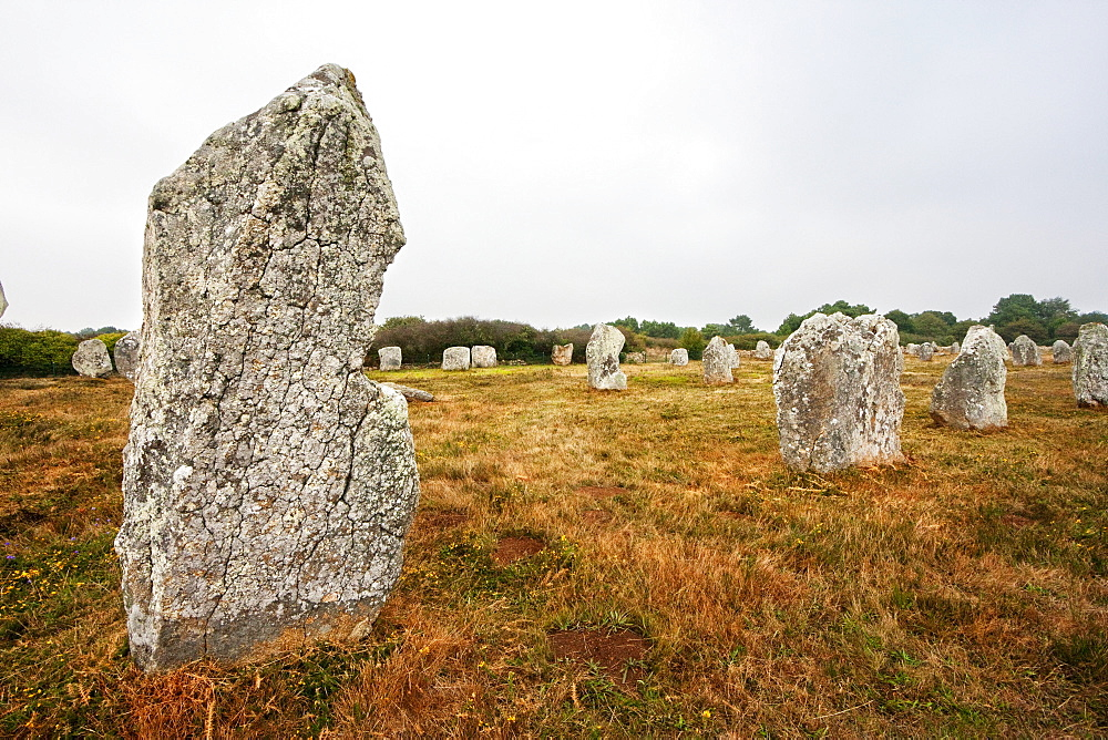 Menhirs in the Le Ménec alignments, Carnac, Morbihan, France