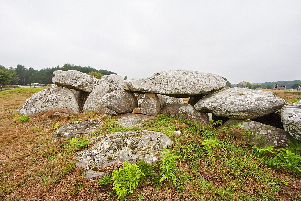Dolmen by the Kermario alignments, Carnac, Morbihan, France