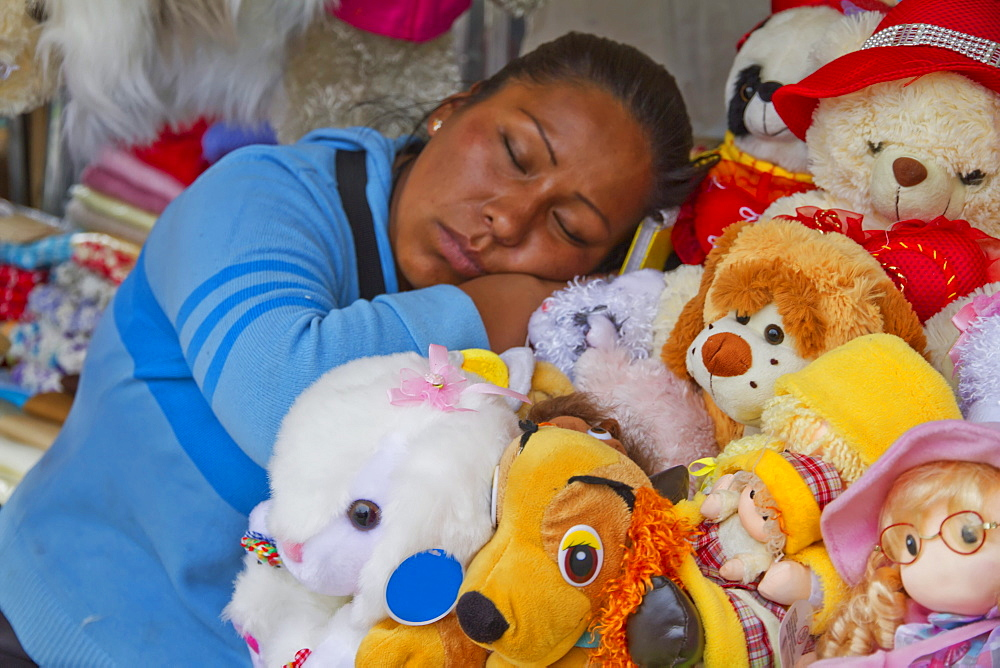 Woman sleeping with stuffed animals at the Alasitas Fair, La Paz, Bolivia