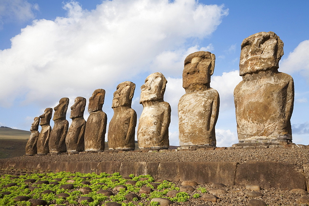 Fifteen moais from different periods, restored by archaeologist Claudio Cristino, at Ahu Tongariki, Rapa Nui (Easter Island), Chile