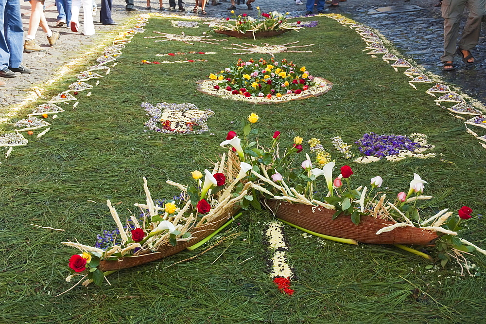 Carpet made of pine needles & flowers along the Good Friday processional route. Carpet-making is thought of as a sacrificial act, as the elaborate detail and time that go into the carpet making is a way for people to give something of themselves in memory of the crucifixion of Jesus. These carpets last on average 2 hours before they are destroyed by the many feet that march over them during a procession in Antigua Guatemala., Sacatepéquez, Guatemala