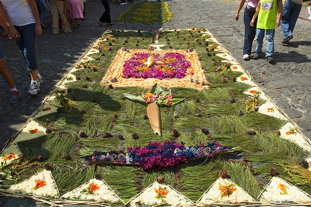 Carpet made of pine needles & flowers along the Good Friday processional route. Carpet-making is thought of as a sacrificial act, as the elaborate detail and time that go into the carpet making is a way for people to give something of themselves in memory of the crucifixion of Jesus. These carpets last on average 2 hours before they are destroyed by the many feet that march over them during a procession in Antigua Guatemala., Sacatepuquez, Guatemala