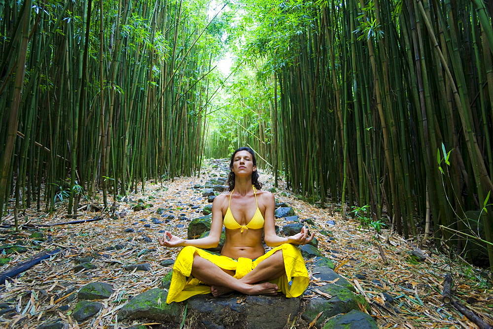 Hawaii, Maui, Kipahulu, Woman meditating in bamboo forest.