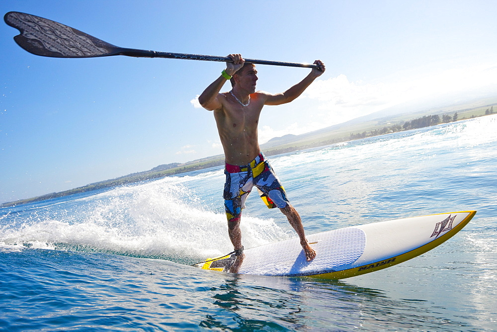 Hawaii, Maui, Paia, Athletic stand up paddle boarder rides wave