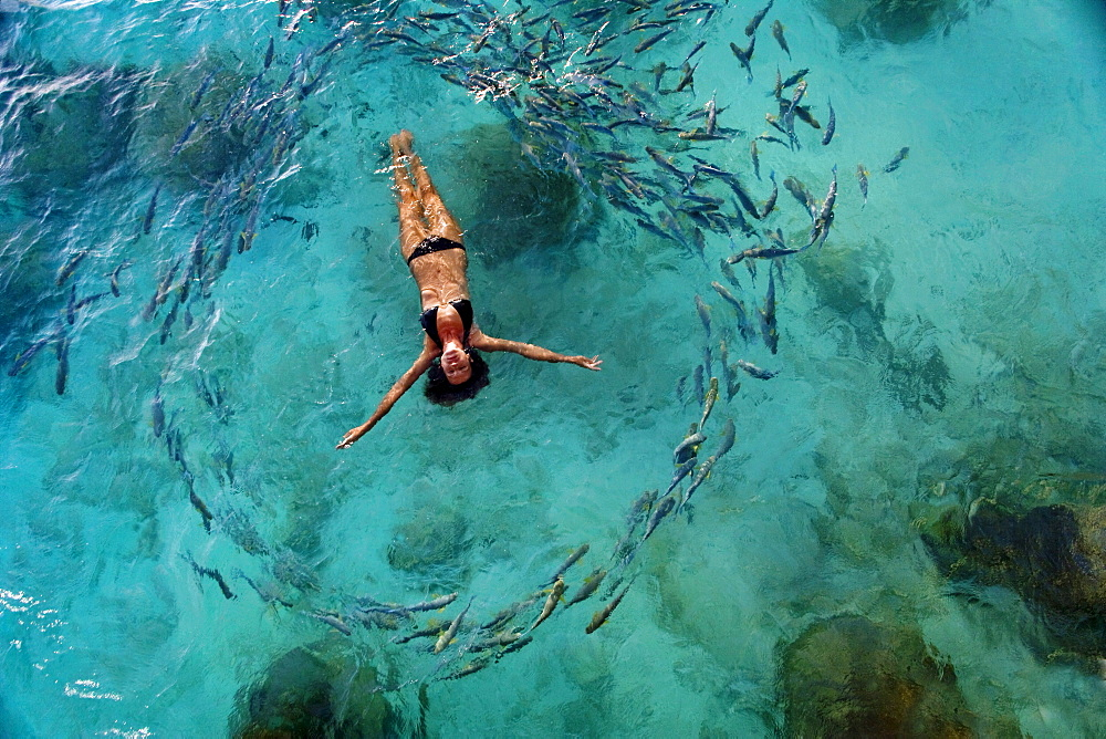 School of fish encircling woman floating in tropical ocean water. - 1116-27985