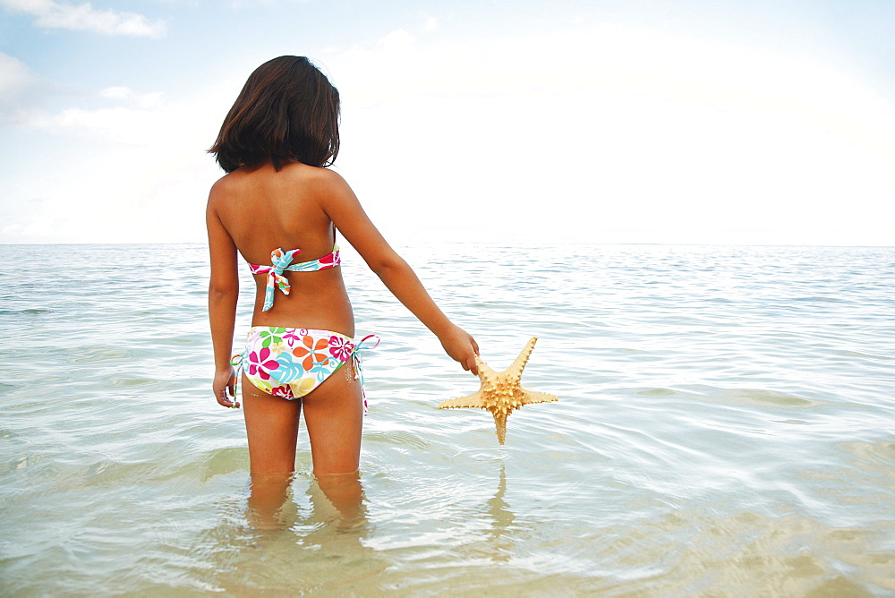 Hawaii, Oahu, Young girl holding a starfish, view from behind.