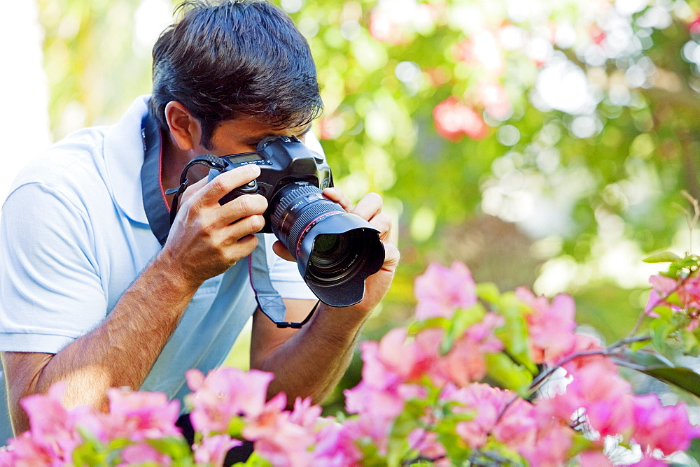 Hawaii, Maui, Male photographer taking pictures of bougianvilleas.
