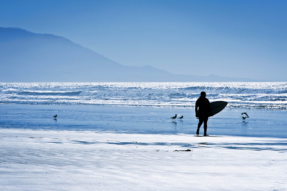 California, Morro Bay, Silhouette of surfer on beach.