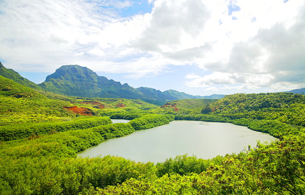 Hawaii, Kauai, Menehune Fish Pond.