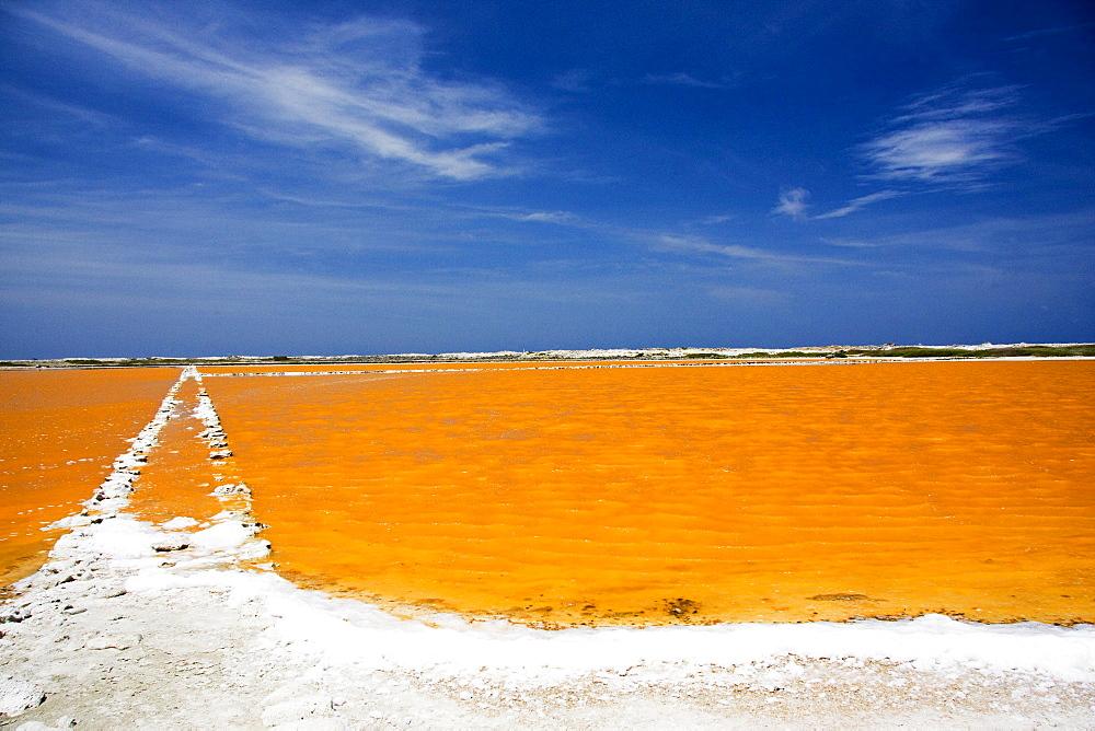 Caribbean, Bonaire, Netherlands Antilles, Salt Pan near Lac Bay.
