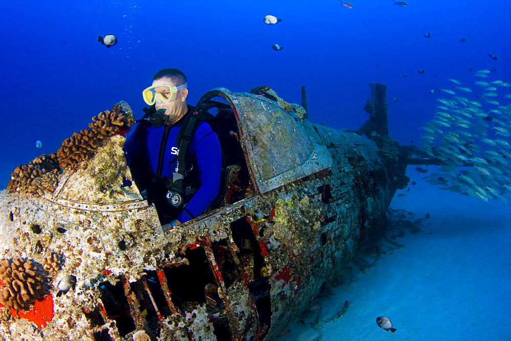 Hawaii, Oahu, Male diver exploring World War II Corsair fighter plane wreck.