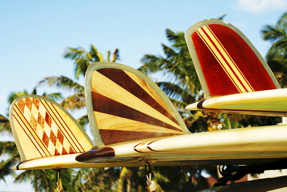 Hawaii, Oahu, Colorful Hawaiian design surfboards fins.
