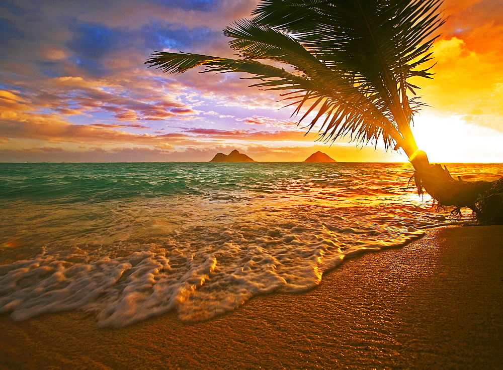 Hawaii, Oahu, Lanikai beach at sunrise.