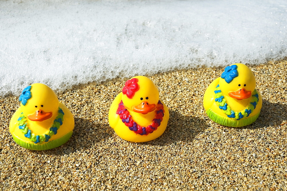 Three toy hula ducks on sandy beach with seafoam in background.