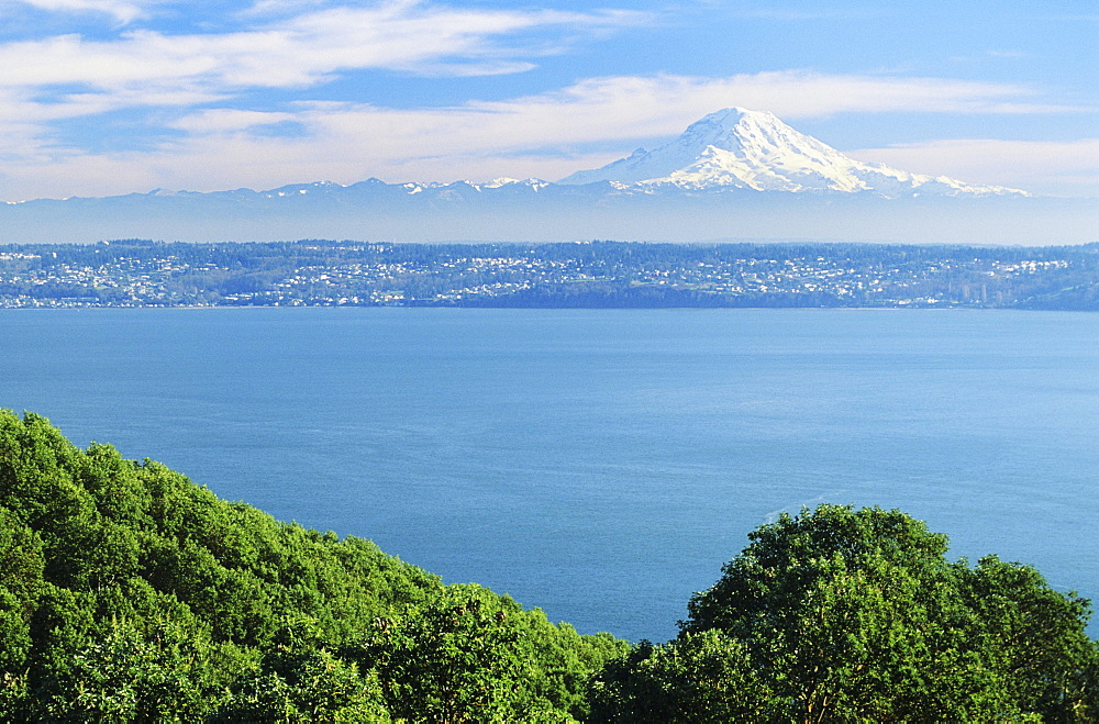 Washington, Seattle, View of Mt.Rainier from Puget Sound, Greenery in foreground.