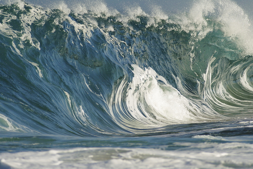 Hawaii, Oahu, North Shore, beautiful textures surface of a shorebreak wave about to crash.