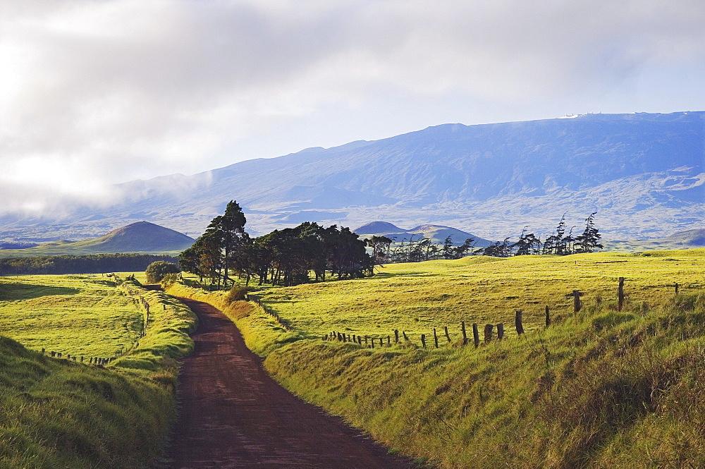 Hawaii, Big Island, Waimea, view of Kohala Mountain from Mana Road.