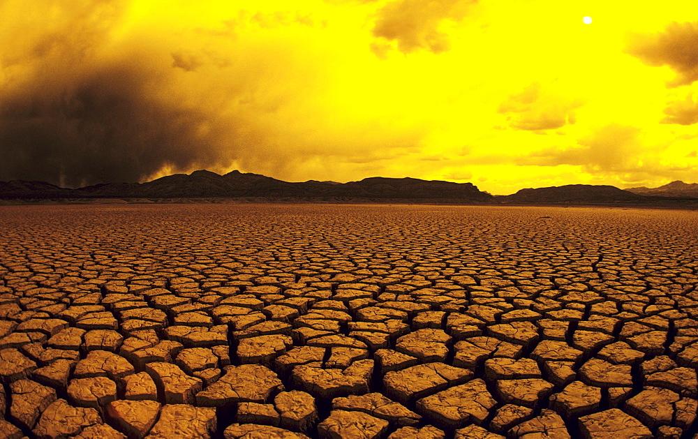 California, El Mirage, Dry lake bed, Cracked mud in warm afternoon lighting.