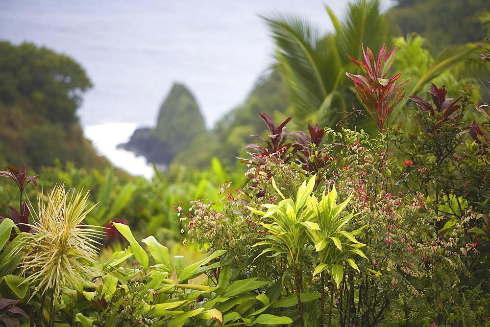 Hawaii, Maui, Hana, Scene from the Garden of Eden.