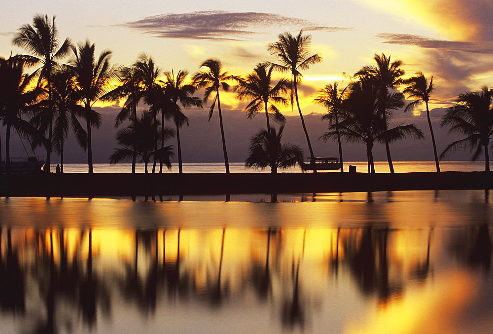 Hawaii, Big Island, South Kohala, Anaeho'omalu Bay, sunset and coconut palms - 1116-34582