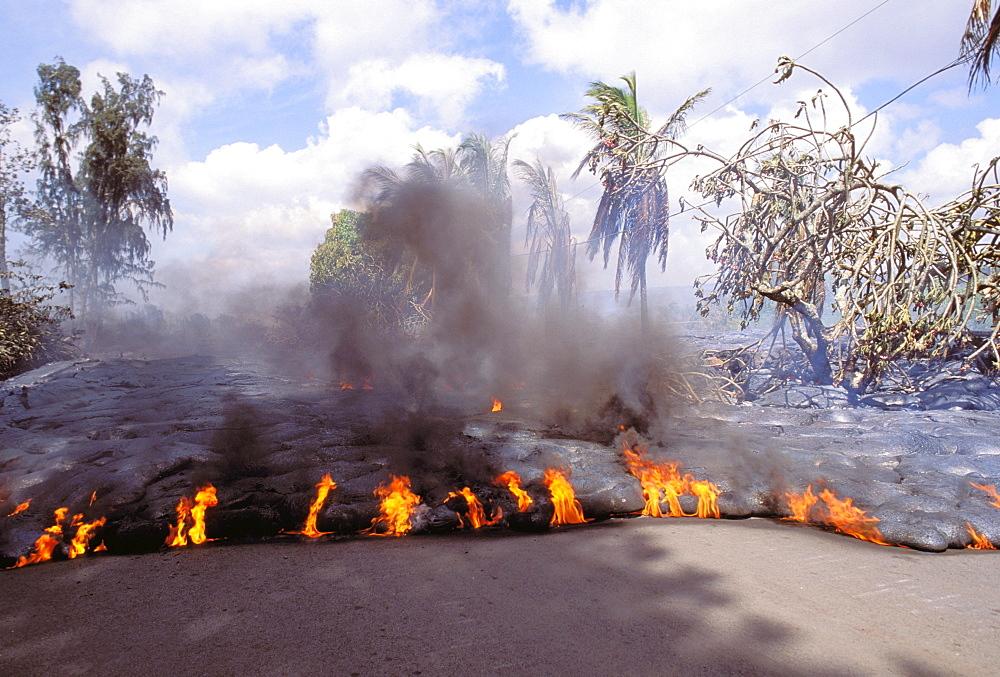 Hawaii, Big Island, Kalapana, flowing lava consumes road at Kalapana