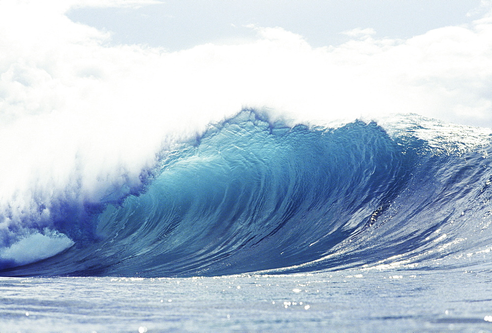 Hawaii, Oahu, Perfect wave at Pipeline.