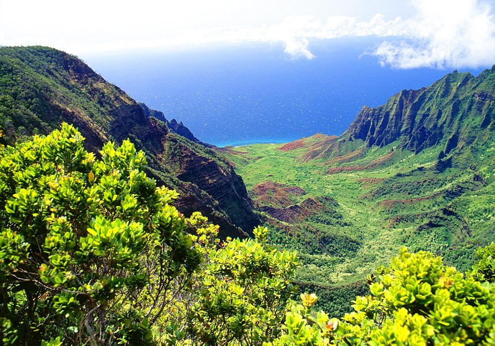 Hawaii, Kauai, Kokee State Park, Kalalau Valley Lookout