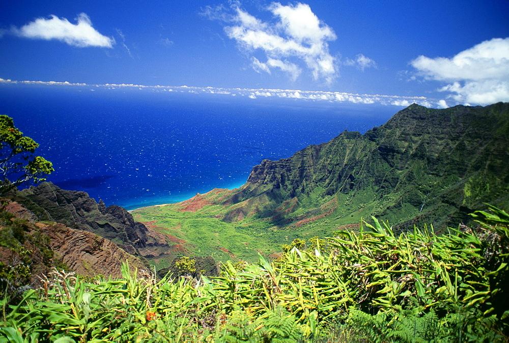 Hawaii, Kauai, Napali Coast, Kokee State Park, Kalalau Valley viewpoint