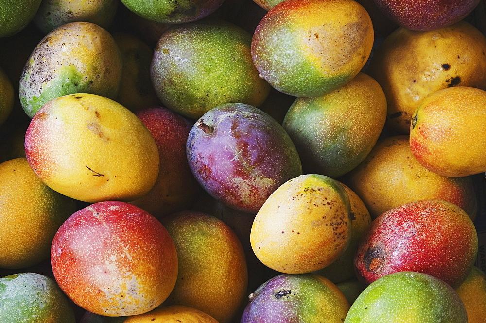 Hawaii, Oahu, Honolulu, Fresh, ripe mangoes for sale at Chinatown market stall