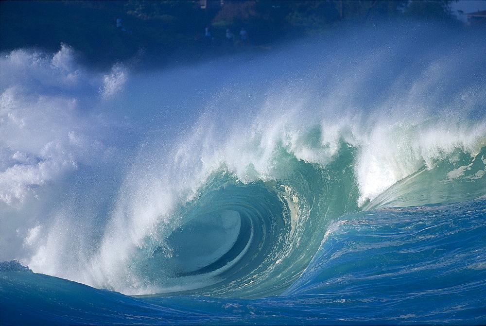 Hawaii, Oahu, Aimee shore break, big waves