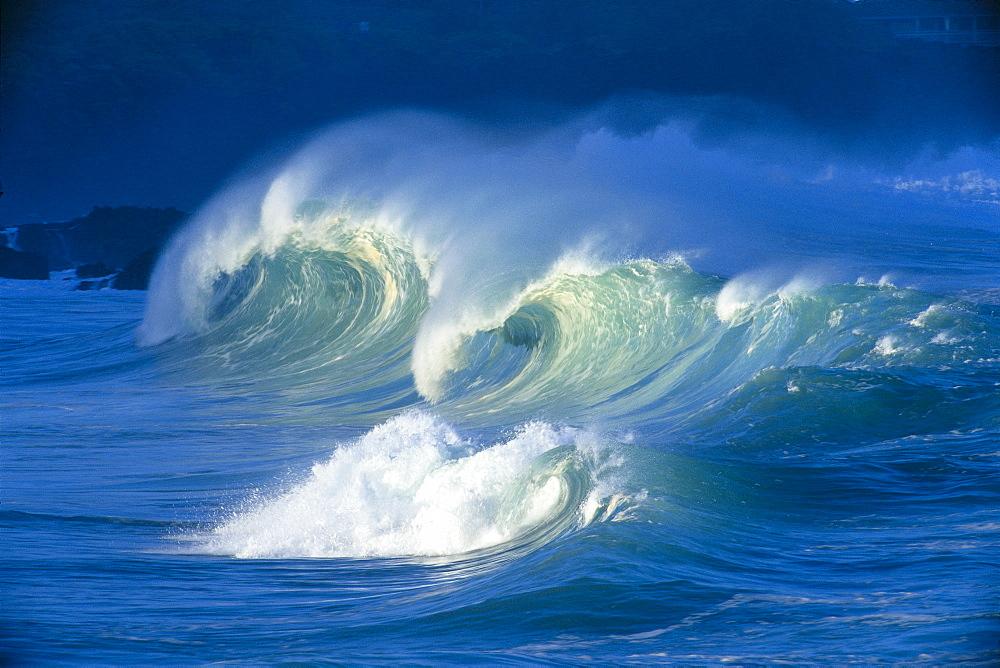 Big stormy waves with white caps curling, Waimea shore break