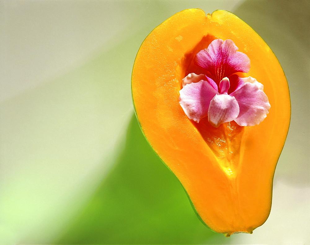 Papaya cut in half, orchid in tropical fruit, studio shot C1177