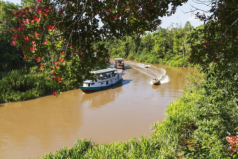 Klotok river boat on the Sekonyer River, Tanjung Puting National Park, Central Kalimantan, Borneo, Indonesia