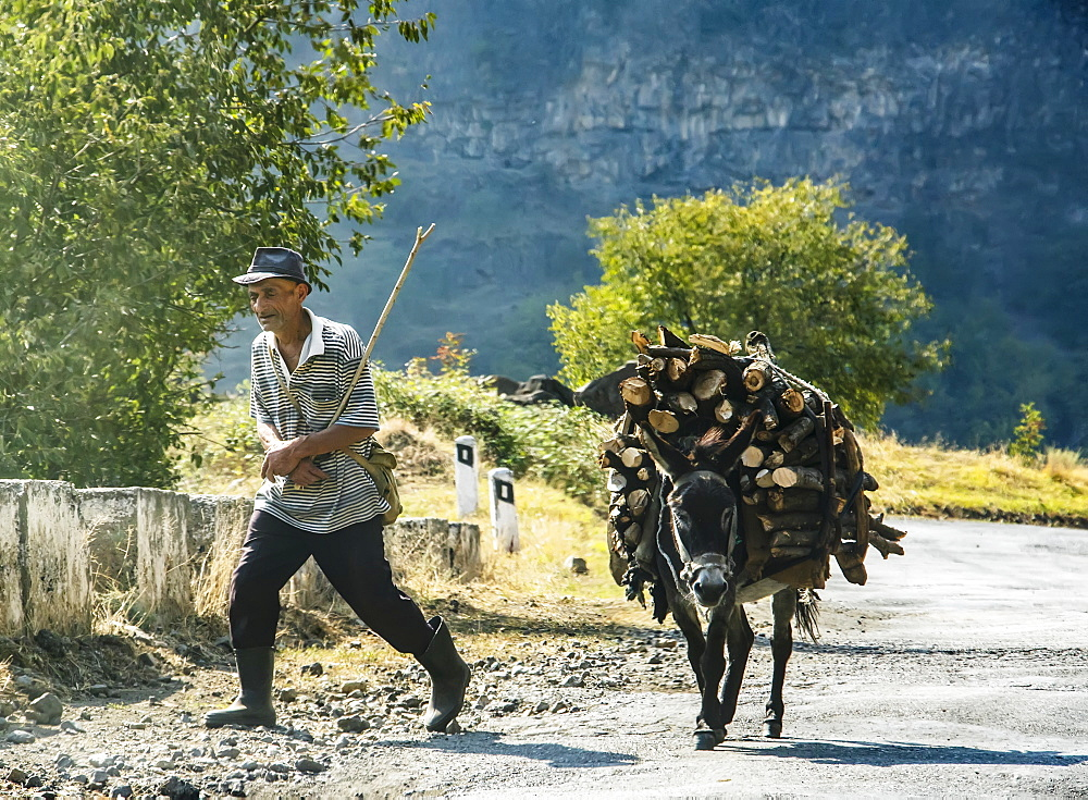 Man and donkey laden with firewood, Lori Province, Armenia