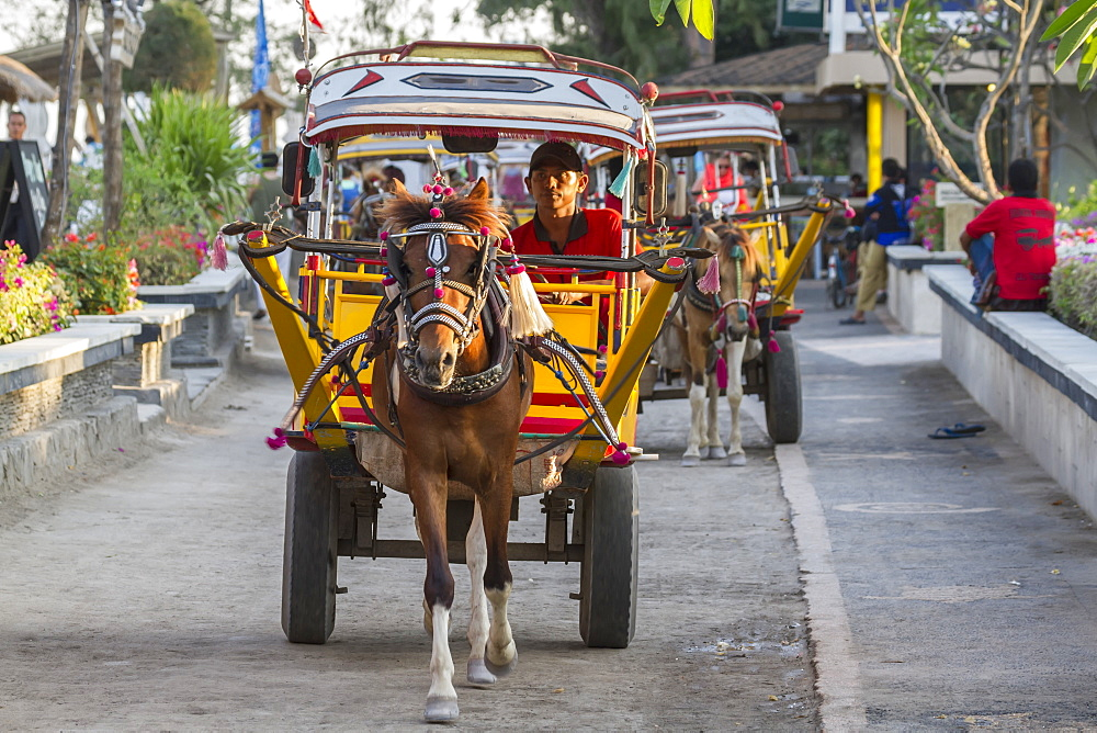 Cidomo, a horse-drawn carriage, Gili Trawangan, West Nusa Tenggara, Indonesia
