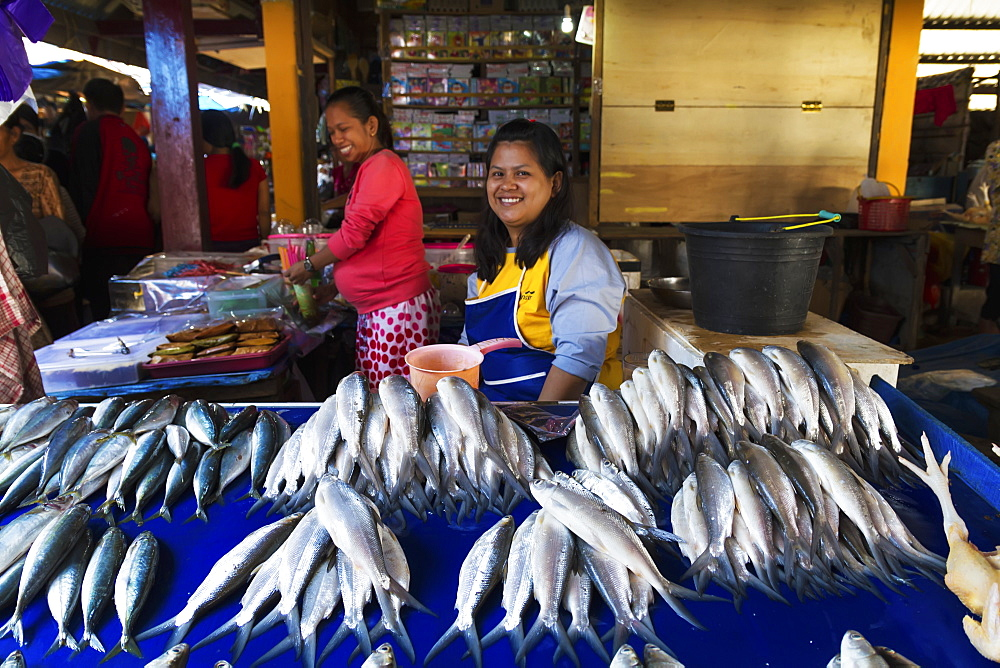 Fishmonger at the Bolu market, Rantepao, Toraja Land, South Sulawesi, Indonesia