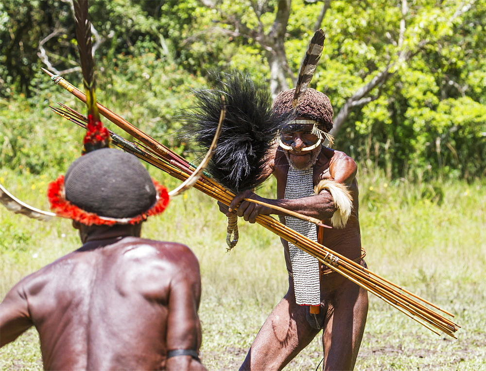 Dani men engaged in a mock battle with long spears, in a display of prowess and opulence of dress and decoration, Obia Village, Baliem Valley, Central Highlands of Western New Guinea, Papua, Indonesia