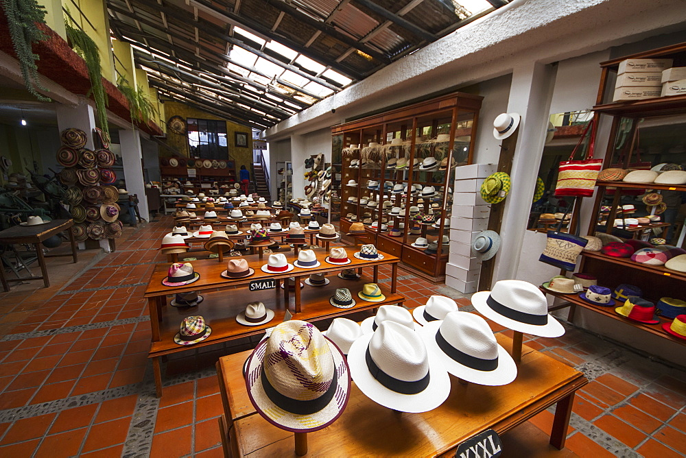 Panama hats for sale in the showroom of the Barranco Panama Hat Factory, Cuenca, Azuay, Ecuador