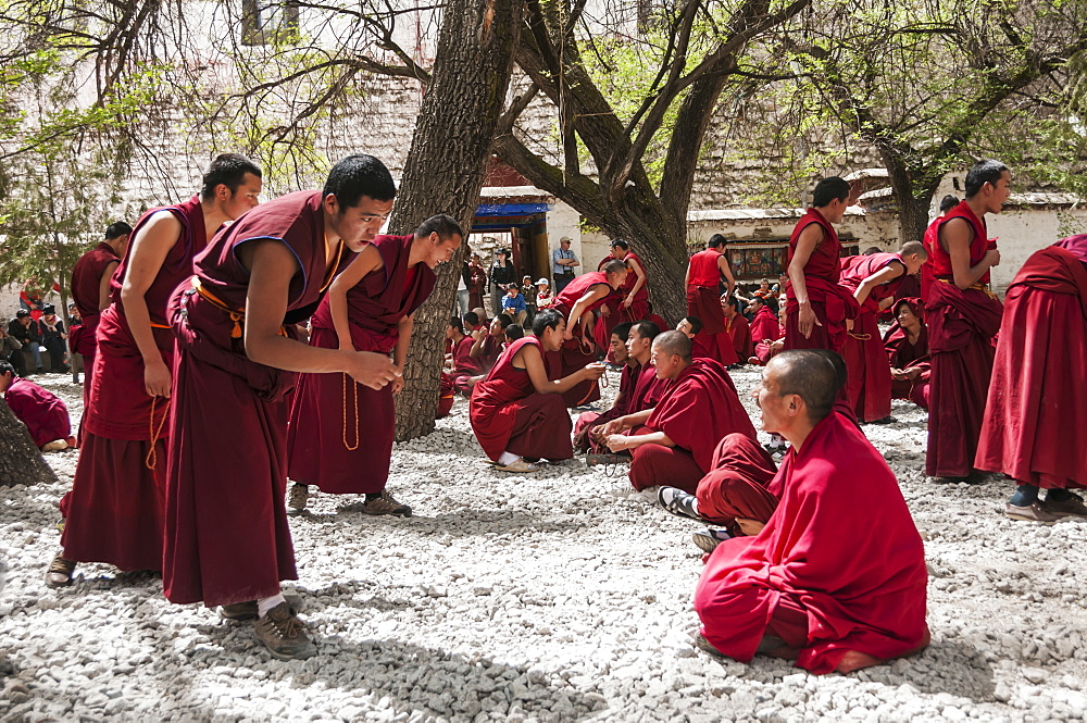 A traditional Tibetan debate in Sera Buddhist Monastery, near Lhasa, Tibet, China - 1116-39445